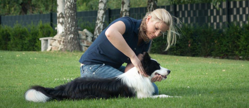 Chiropraktikerin für Hunde  | Chiropraktik Hund Wien Niederösterreich | Tier - Chiropraktiker