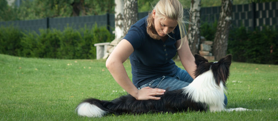 slide-2Chiropraktikerin für Hunde  | Chiropraktik Hund Wien Niederösterreich | Tier - Chiropraktiker